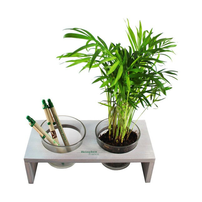 Mini plante dans pots en verre et plateau de bureau publicitaire - VERROBURO