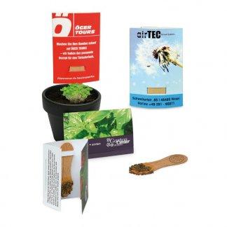Bâtonnet de graines en bois dans carte-étui promotionnelle - BATOBOIS