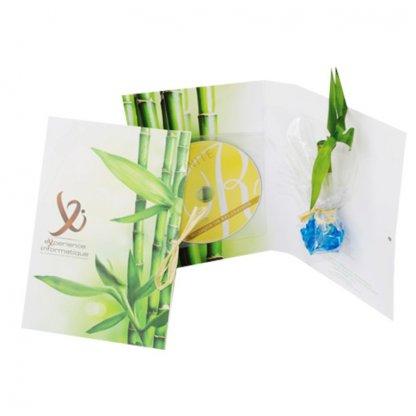 Carte De Voeux Personnalisable + CD Avec Canne Chinoise CARTE CD