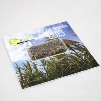 Carte publicitaire avec capsule de graines - carrée - VISIO-GRAINES