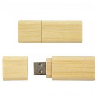 Clé USB publicitaire en bois ou bambou - ECOWIN