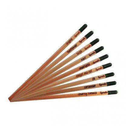 Crayon à Planter Promotionnel En Bois Certifié Variétés SPROUT