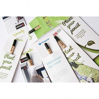 Crayon à Planter Publicitaire En Bois Certifié Pochette SPROUT