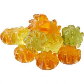 Gomme de fruit à l'Aloé Vera pour végétaliens - sachet personnalisable de 10g - bonbons vrac - BIEN-ETRE VEGAN