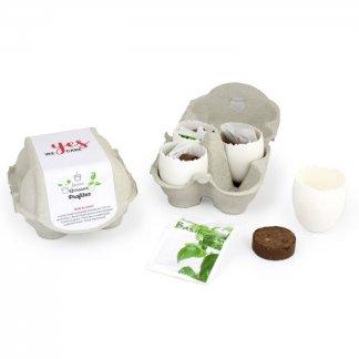 Kit de plantation dans boite à œufs personnalisé - BOITE 4 OEUFS