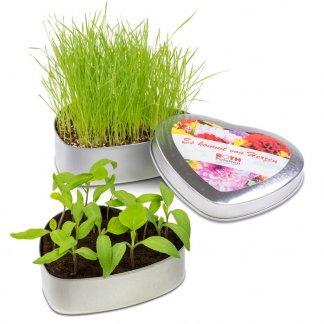 Kit de plantation dans boite cœur en métal personnalisée - PLANTE EN COEUR