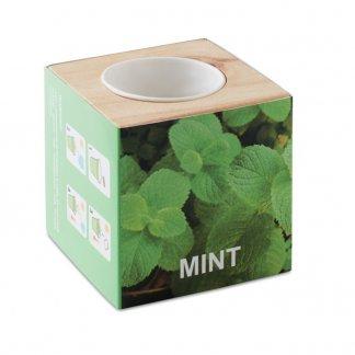 Kit de plantation dans cube en bois personnalisée - Etiquette - MINT
