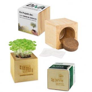 Kit de plantation dans cube en bois promotionnel - Grand format - CUBE BOIS