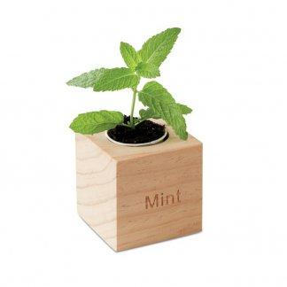 Kit de plantation dans cube en bois publicitaire - MINT