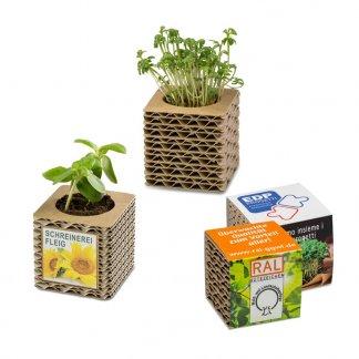 Kit de plantation dans cube en carton promotionnel - 2 formats - CUBE CARTON ONDULE