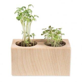 Kit de plantation dans pot en bois promotionnel avec 2 emplacements - SET 2 CUBES BOIS