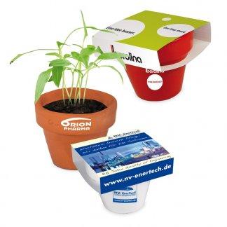 Kit de plantation dans pot en terre cuite et fourreau chapeau personnalisé