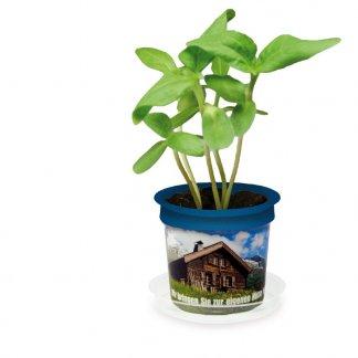 Kit de plantation dans pot personnalisable - Marquage Quadrichromie sur le pot - FLORERO