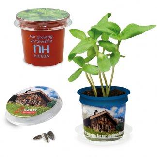Kit de plantation dans pot promotionnel - FLORERO