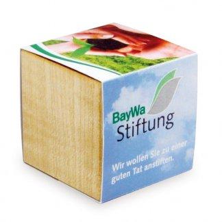 Kit de plantation personnalisé dans cube en bois avec aimant - Avec fourreau personnalisé - CUBE BOIS AIMANT