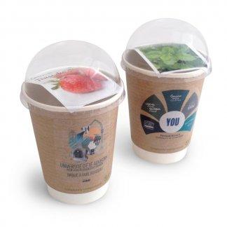 Kit de plantation promotionnel dans gobelet en carton et dôme biodégradables - SMOOTHIE