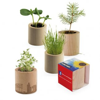 Kit de plantation promotionnel dans pot en bois rond - POT ROND BOIS