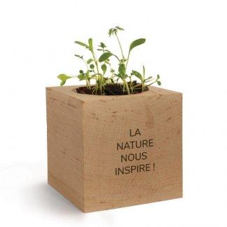 Kit de plantation publicitaire dans cube en bois - NATURACUBE