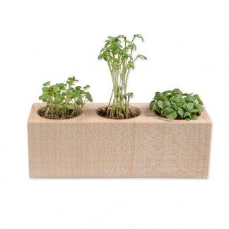 Kit de plantation publicitaire dans pot en bois avec 3 emplacements - SET 3 CUBES BOIS