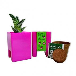 Kit de plantation publicitaire dans pot spécial écran ordinateur - LE POT'ORDI KIT