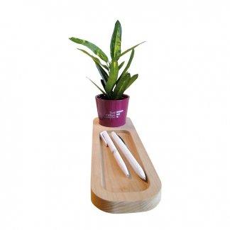 Mini plante dans pot et plateau en bois personnalisé - Marquage 1 couleur sur le pot - LE PLATEAU NATURE