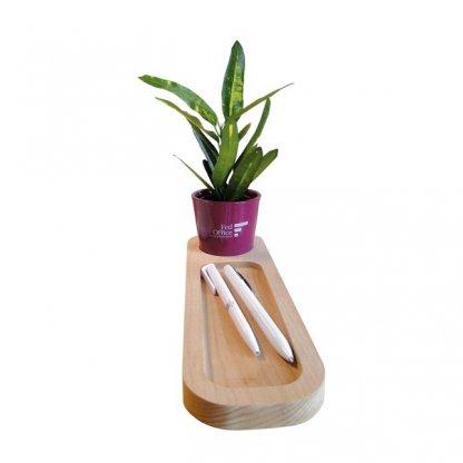 Mini Plante Dans Pot Et Plateau En Bois Personnalisé Marquage 1 Couleur Sur Le Pot LE PLATEAU NATURE