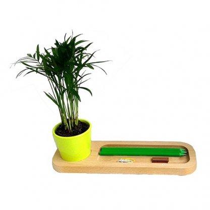 Mini Plante Dans Pot Et Plateau En Bois Publicitaire Pot Vert LE PLATEAU NATURE