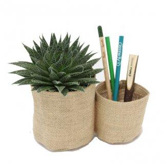 Mini plante et duo de pots en toile de jute personnalisable - PLANTENTOILE