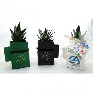 Plante dépolluante dans pot recyclé publicitaire spécial écran ordinateur - 3 couleurs - LA VEGETAL BOX