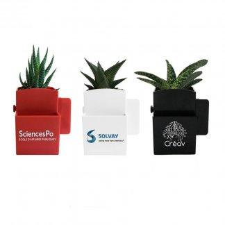 Plante dépolluante dans pot recyclé spécial écran ordinateur promotionnel - 3 plantes - LA VEGETAL BOX
