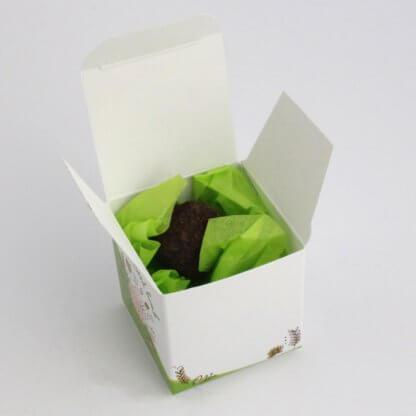 Bombe à Graines Dans Cube En Carton BOMBE CUBE Boite Ouverte