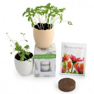 Kit De Plantation Publicitaire Avec Pot Recyclé En Forme D'œuf KIT OEUF