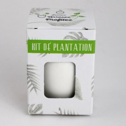 Kit De Plantation Avec Pot Recyclé En Forme D'œuf KIT OEUF Dans Boite
