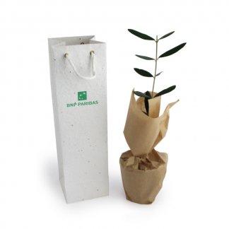 Plant D'arbre Dans Sac Biodégradable Avec Gaines Personnalisable A SEMER