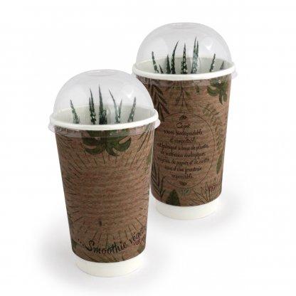 Plante Dans Gobelet Engrais Et Dôme Biodégradables SMOOTHIE PLANTE