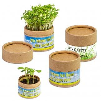 Kit De Plantation Promotionnel Dans Boite En Papier Kraft GARTEN