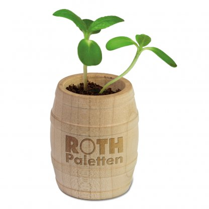 Kit De Plantation Dans Tonneau En Bois TONNEAU Ouvert